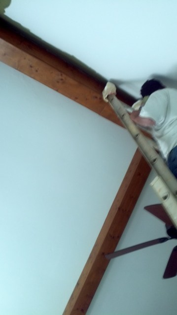 Painter on ladder painting a vaulted ceiling in a Charlotte home.